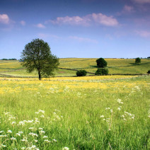 Britain's most beautiful countryside