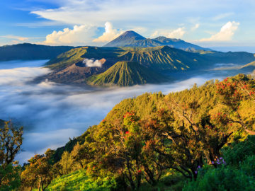 stock-volcano-indonesia-1550x804