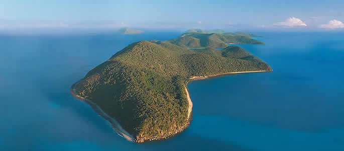 orpheus island fishing trips